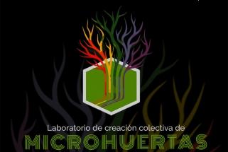 Asista a la muestra de resultados del Laboratorio colectivo de microhuertas