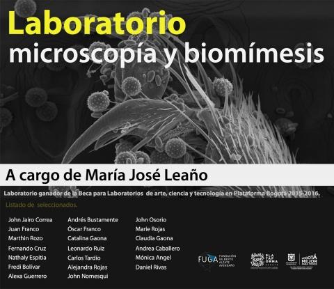Convocatoria: Laboratorio microscopía y biomímesis en Plataforma Bogotá