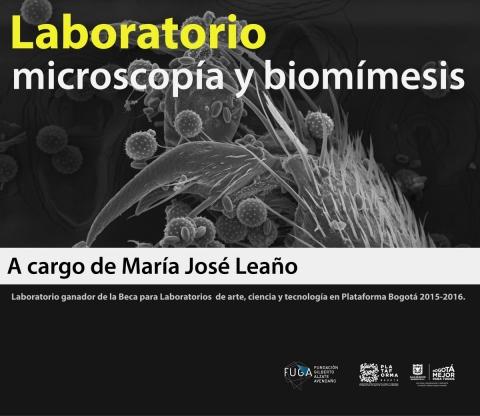 Laboratorio microscopia ybiomimesis